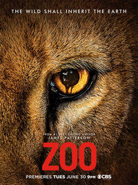 Bild Zoo