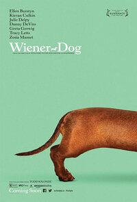 Bild Wiener-Dog