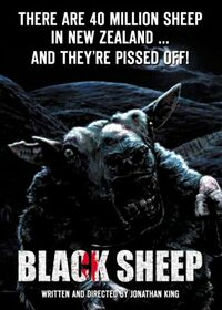 Bild Black Sheep