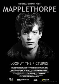 image Mapplethorpe: Look at the Pictures