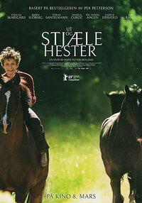 image Ut og stjæle hester