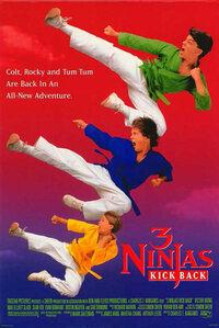 image 3 Ninjas Kick Back