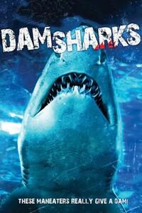 image Dam Sharks