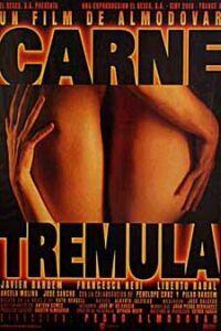 Bild Carne Trémula