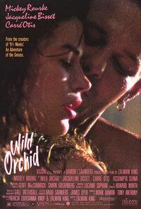 Bild Wild Orchid