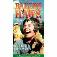 Bild Baker's Hawk