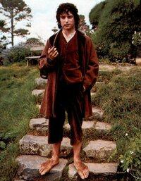 Bild Hobbits