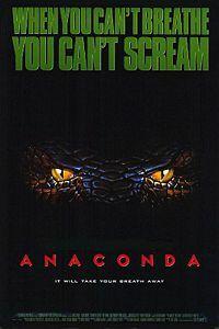 Bild Anaconda