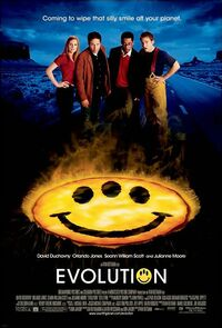 Bild Evolution