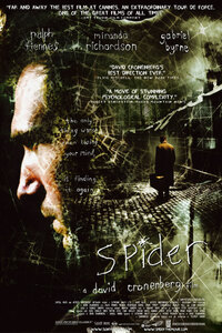 Bild Spider
