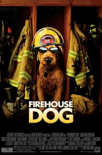 Bild Firehouse Dog