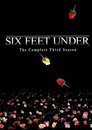 Six Feet Under > Death Works Overtime