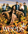 Weeds > A Distinctive Horn