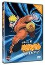 Naruto > 9. Staffel