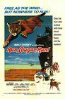Die Flucht des Pumas