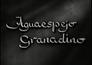 Aguaespejo granadino