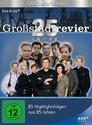 Großstadtrevier > Staffel 25