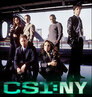 CSI: NY > Love Run Cold