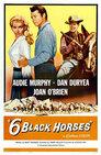Sechs schwarze Pferde