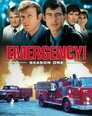 Emergency! > The Firehouse Four
