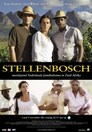 Stellenbosch > Episode 1: Mandela's Year